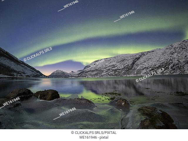 A powerful northern lights reflects itself at sunset in a frozen bay in the tysfjord , Nordland county Norway Europe