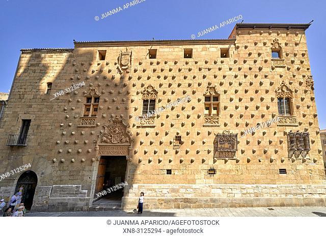 La Casa de las Conchas, Salamanca City, Spain, Europe