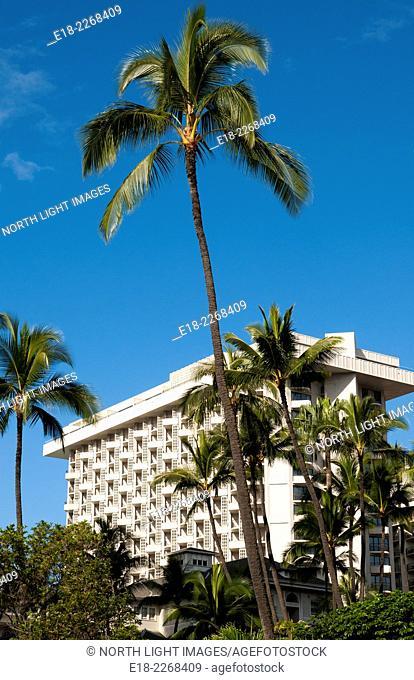 USA, Hawaii, Honolulu, Waikiki. Palm trees tower over tourist hotel in popular vacation resort