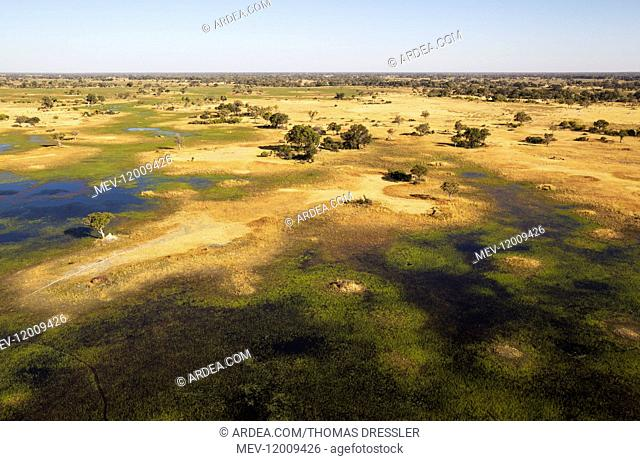 Freshwater marshes with streams, channels and islands - aerial view - Okavango Delta, Moremi Game Reserve, Botswana