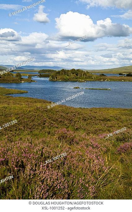 RANNOCH MOOR ARGYLL Loch Ba moorland heather heathland landscape