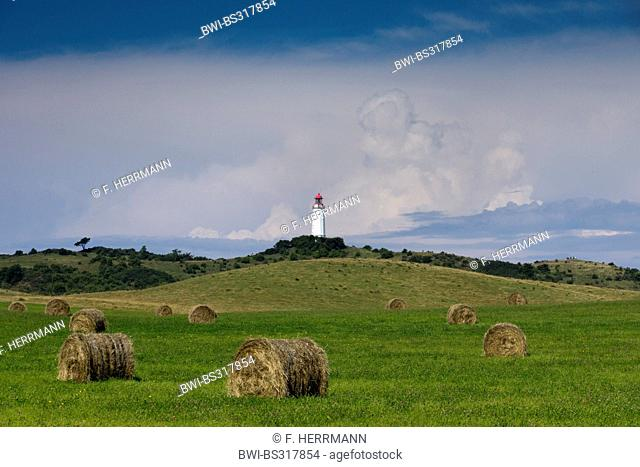 haybales in a meadow with lighthouse of Hiddensee in the background, Germany, Mecklenburg-Western Pomerania, Hiddensee, Dornbusch