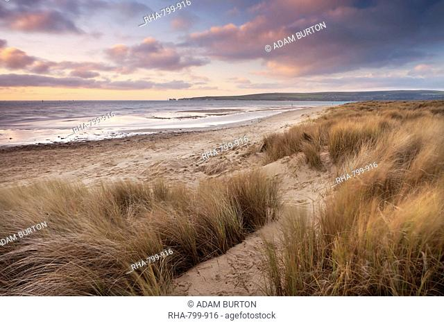 Sandy beach studland bay Stock Photos and Images | age fotostock
