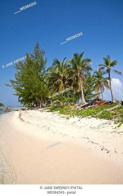 Water Caye, Bay Islands, Honduras