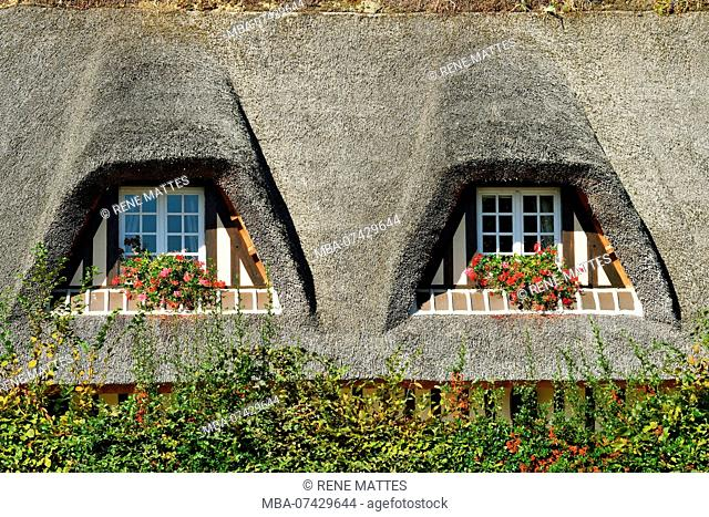 France, Calvados, Pays d'Auge, Beuvron-en-Auge, labelled Les Plus Beaux Villages de France (The Most Beautiful Villages of France)