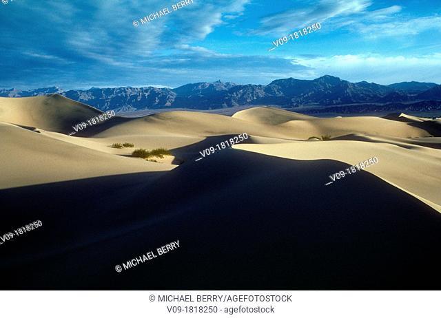 Dunes, Death Valley NP, California, USA
