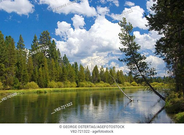Deschutes Wild and Scenic River, Deschutes National Forest, Oregon, USA