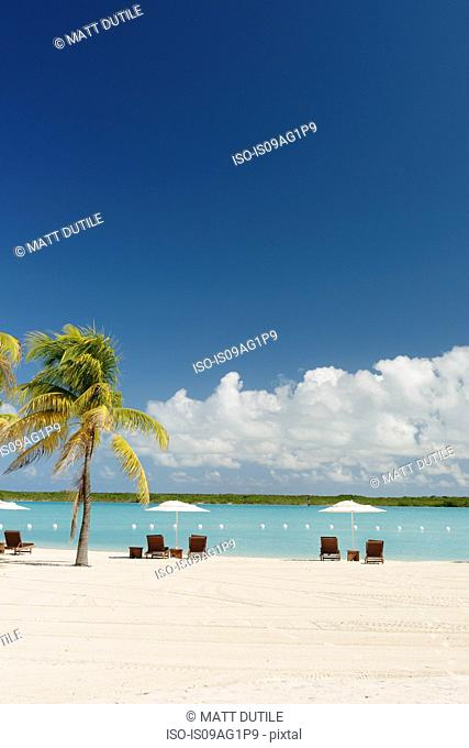 Sunbeds and beach umbrellas at beach resort, Providenciales, Turks and Caicos Islands, Caribbean
