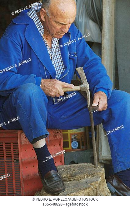 Man sharpening scythe, Palas de Rei. Lugo province, Galicia, Spain