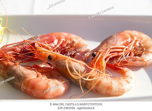 Boiled red shrimps on plate for appetizer Calpe Spain