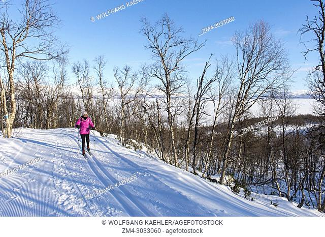 A woman (Model Release 20020923-10) is cross-country skiing at Bjorkliden in Swedish Lapland; northern Sweden