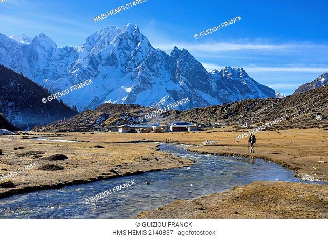 Nepal, Gandaki zone, Manaslu Circuit, between Dharamsala and Bimthang, Bimthang (alt.3800m)