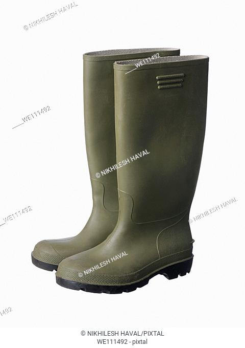 Wellies rubber boots