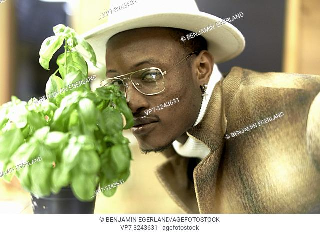 stylish blogger man behind fresh basil plant indoors, in Munich, Germany