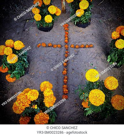 A cross made of marigold flowers decorates a tomb during Day of the Dead celebrations in the cemetery of San Gregorio Atlapulco, Xochimilco, Mexico City, Mexico