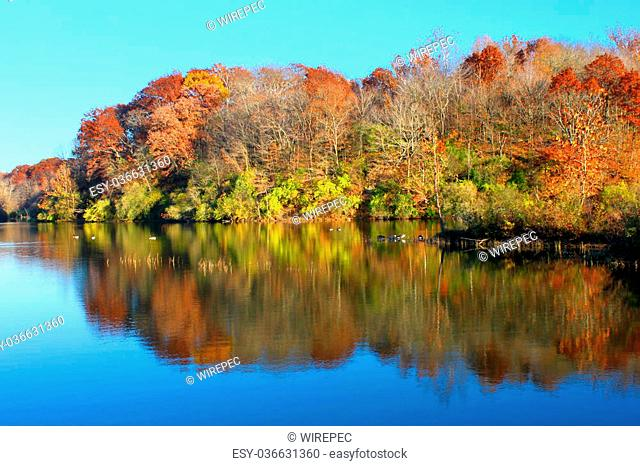 Kickapoo State Park is located in Vermilion County Illinois and features numerous hiking paths and lakes