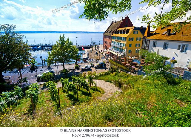 Vineyards, the medieval city of Meersburg on Lake Constance Bodensee, Baden-Württemberg, Germany