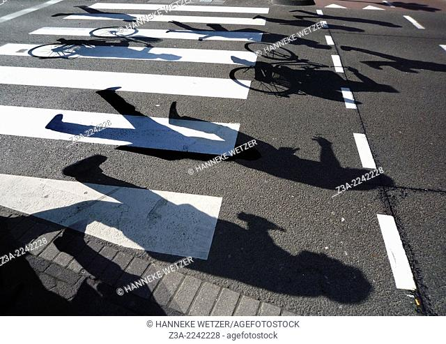 Shadows crossing a road