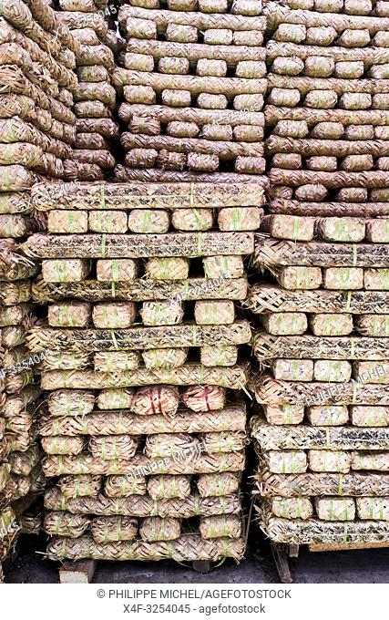 China, Sichuan province, Mingshan, tea factory, brick of tea for tibetan market