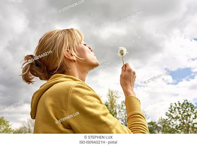 Mature woman blowing seeds off dandelion, low angle view