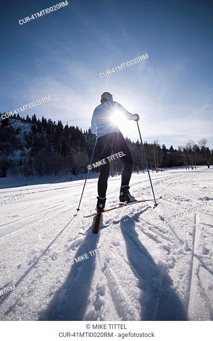 Cross country skier on snowy field