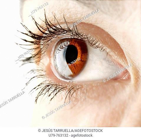 Woman's eye r