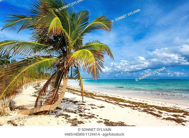 Bahamas, Eleuthera Island, Double Bay Beach