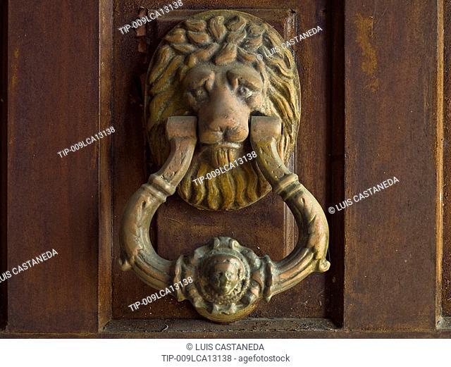 Front Door Lion Knocker