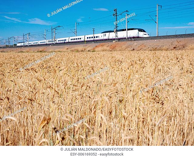 High Speed †‹†‹Line Ave in Ciudad Real, Castilla La Mancha, Spain