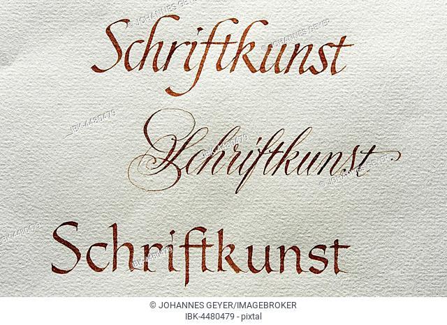 Calligraphy studio, fonts, Cancellaresca, Anglaise, Antiqua on Ingres paper, Seebruck, Upper Bavaria, Germany