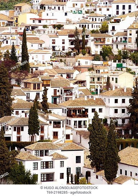 Albaicin seen from the Alhambra. Granada. Spain