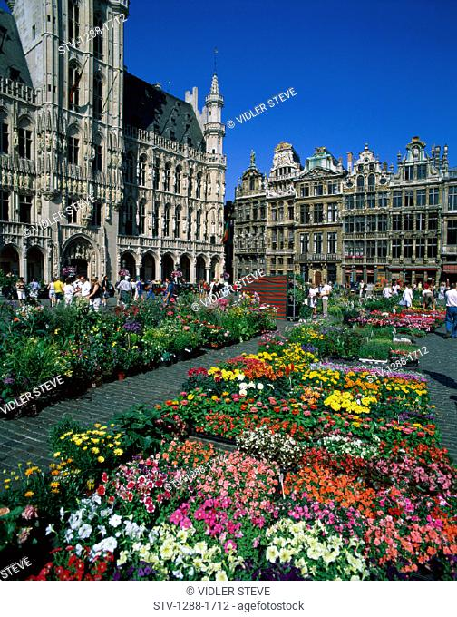 Belgium, Europe, Brussels, Europe, Flowers, Grand place, Holiday, Landmark, Market, Medieval, Tourism, Travel, Vacation