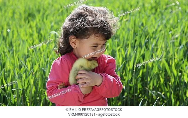 Little girl with a goose chick