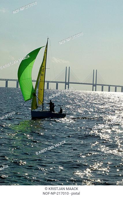 Two people sailing a little sailboat, Oresund bridge in background