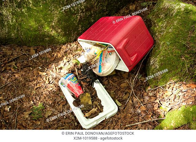Poor 'Leave No Trace' habits on the the side a Sawyer River Trail in the White Mountains, New Hampshire USA