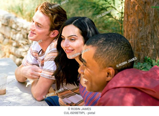 Three young adult friends chatting at park picnic table, Los Angeles, California, USA