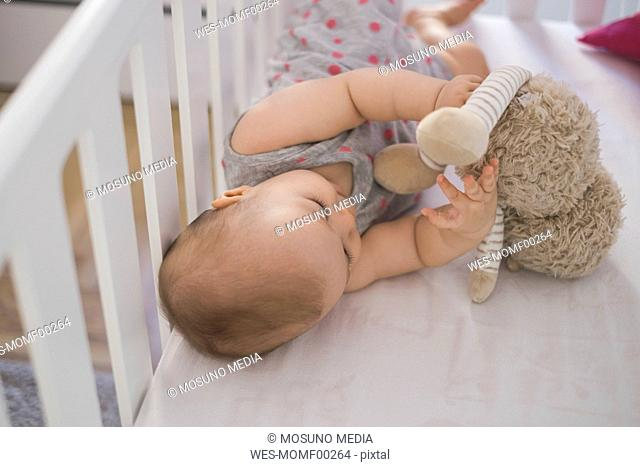 Cute baby girl lying in crib playing with cuddly toy