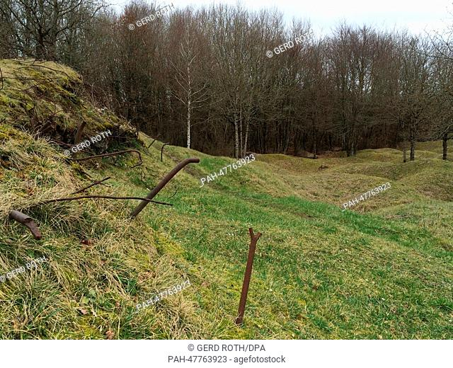 A view of overgrown craters on the former World War I battlefield of Verdun near Verdun, France, 20 February 2014. The typical ripples which mark the...