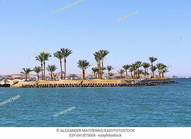 View of tropical island with palm treesion sea. Paradise island in Red sea. Tropical resort. Vacations concept. Marine panorama with beach palm trees and sea