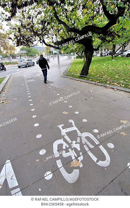 Cycleway, Barcelona, Catalonia, Spain