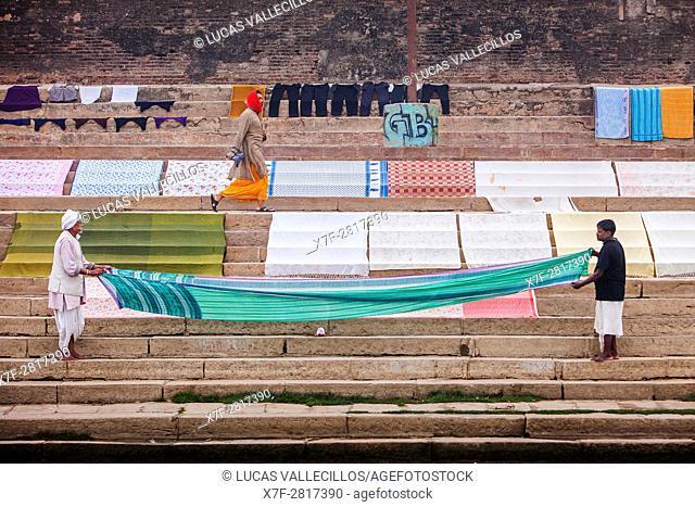 Tending the Laundry for drying, Dasaswamedh Ghat, in Ganges river, Varanasi, Uttar Pradesh, India