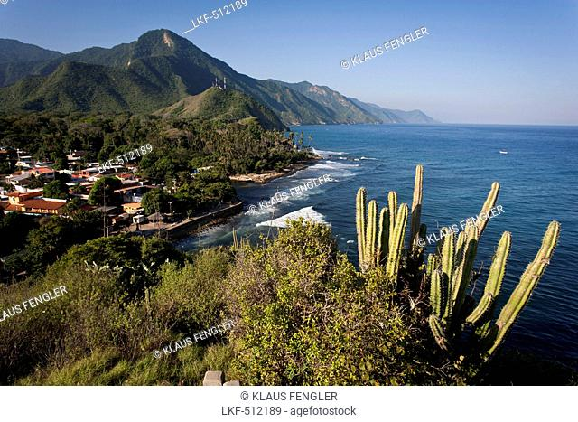 Puerto Columbia, Henri Pittier National Park, Venezuela