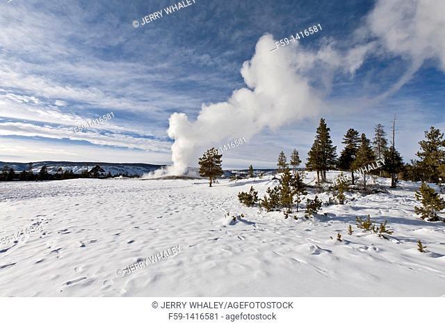 Old Faithful Geyser, Winter, Yellowstone NP, WY