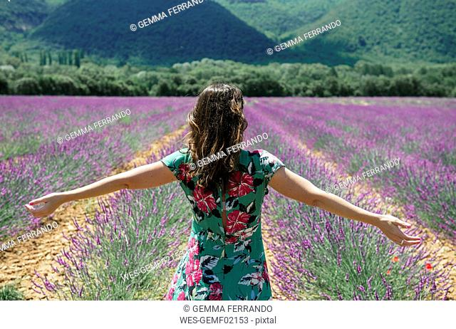 France, Provence, Valensole plateau, woman standing with outstretched arms in lavender fields in the summer