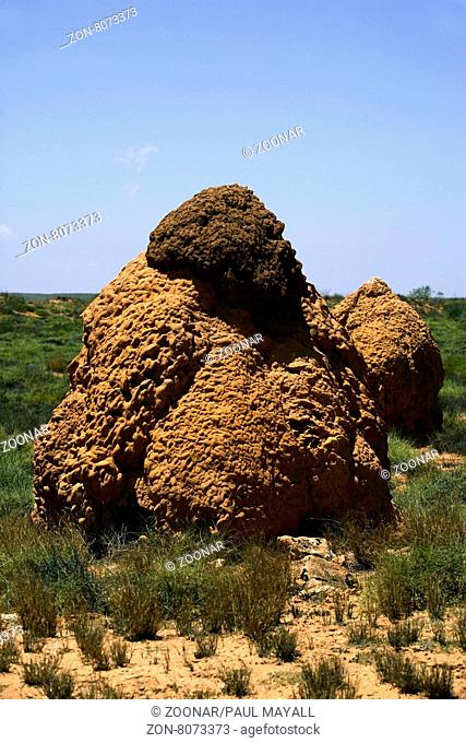 Two Termite Nests in the outback near Exmouth in Western Australia