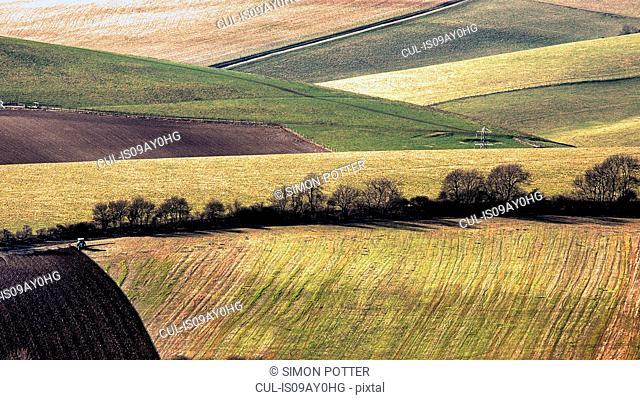 Rolling landscape, Steyning, West Sussex