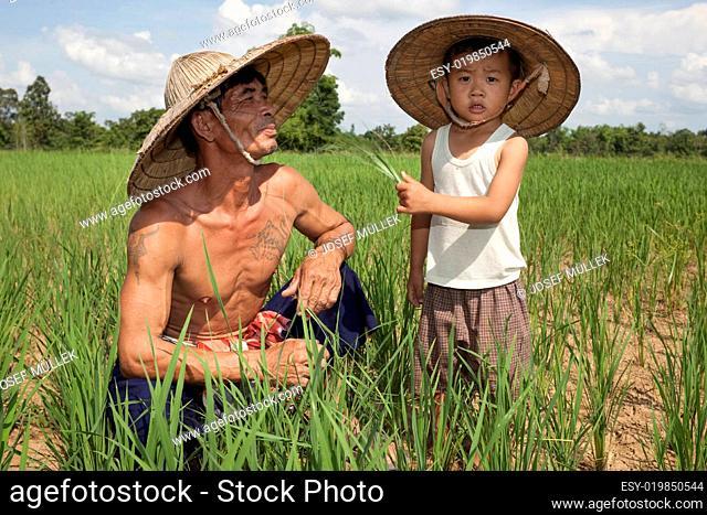 Mann und Kind am Reisfeld, Thailand