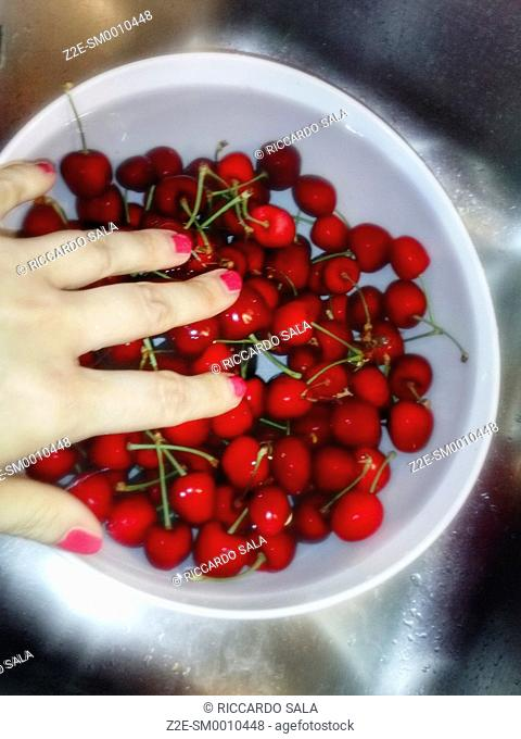 Sweet Cherries Being Washed