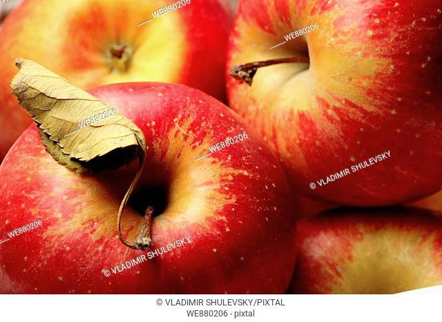 Fuji apples, full frame