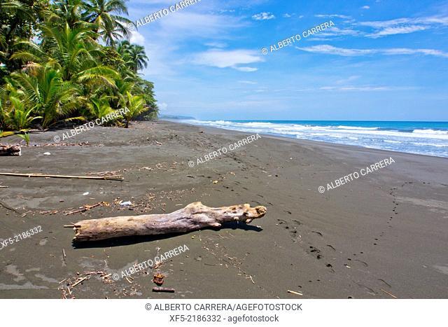 Beach, Corcovado National Park, Osa Conservation Area, Osa Peninsula, Costa Rica, Central America, America
